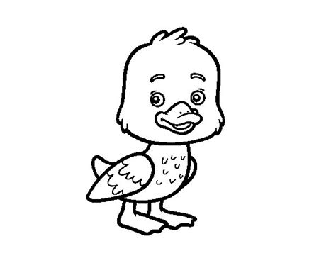 coloring pages de patito dibujo de un patito para colorear dibujos net