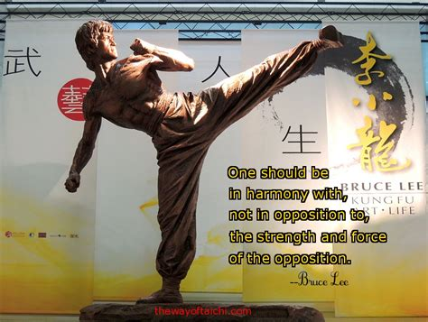 along the way a different martial arts journey experience books martial arts quotes journey of 1000 the