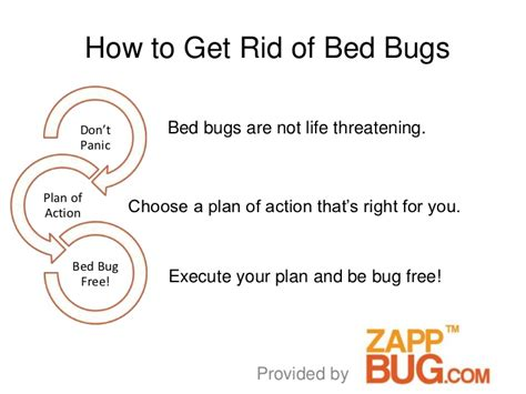 how to get rid of bed bugs cheap how to get rid of bed bugs cheap how get rid of bed bugs