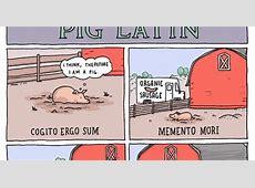 INCIDENTAL COMICS: Pig Latin Flying Pig Drawing