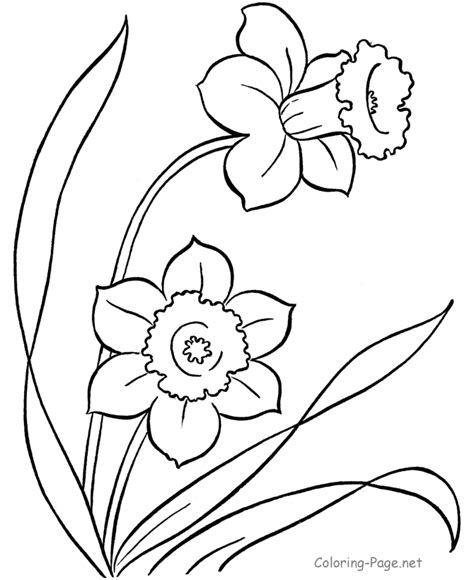 printable springtime flowers spring flower coloring pages printable