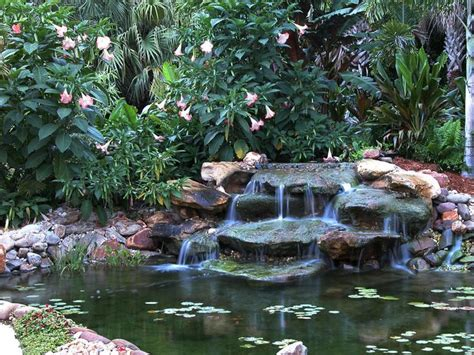 backyard pond supplies best 25 koi pond supplies ideas on pinterest