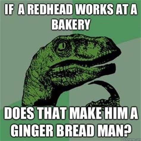 Ginger Snap Meme - 1000 images about ginger jokes on pinterest jokes