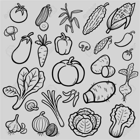 imagenes de verduras faciles para dibujar verduras para colorear dibujos de pintar vegetales
