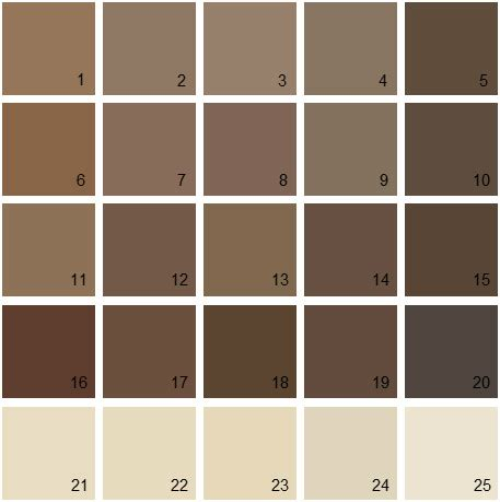 brown paint colors benjamin benjamin paint colors brown palette 08 house