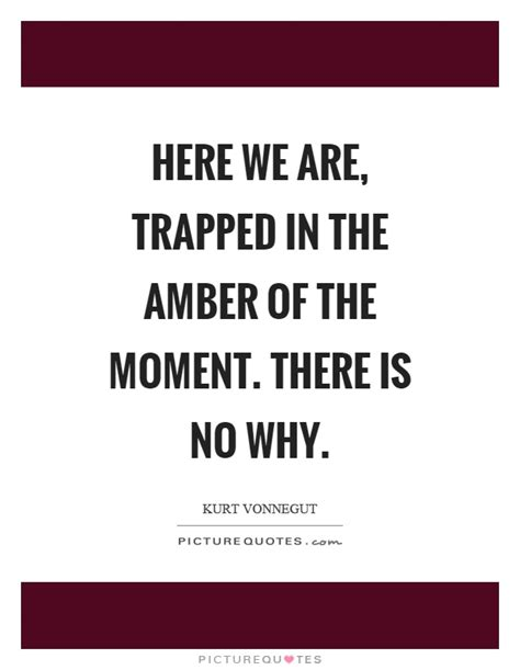 here we are trapped in the of the moment there is no why picture quotes