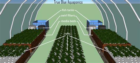 sle business plan greenhouse aquaponic business model diy aquaponics