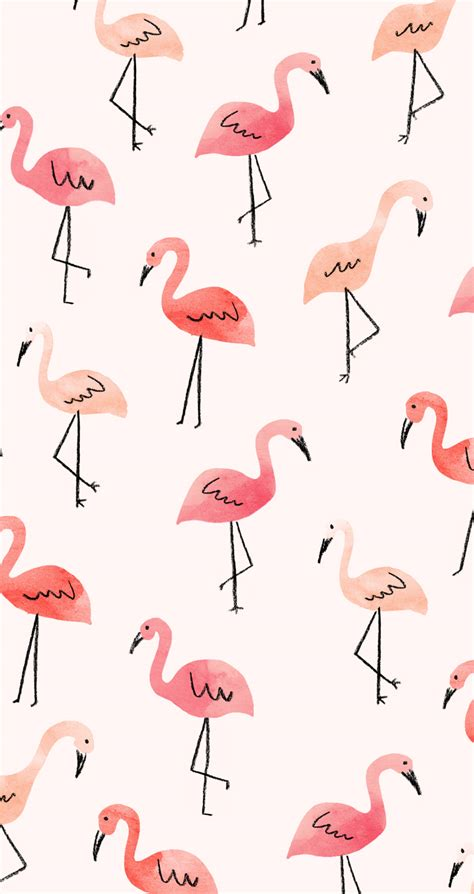 flamingo wallpaper for iphone 6 inspired idea new tech august wallpapers lauren conrad