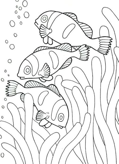 fish habitat coloring pages ocean under the sea coloring pages for kids womanmate com