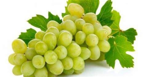 imagenes de los uvas kangris dieta de las uvas monodieta con beneficios para la salud