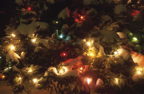 tree lights on sale memory tree lights on sale to honor loved ones