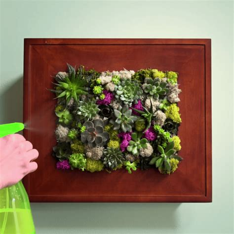 succulent garden wall how to make a succulent wall garden in a picture frame