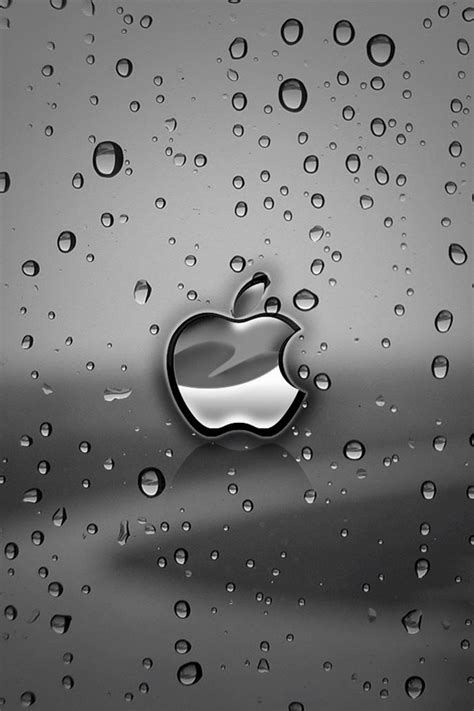 hd wallpapers to iphone 4s 56 steve jobs wallpapers for iphone 4 iphone 4s and ipod