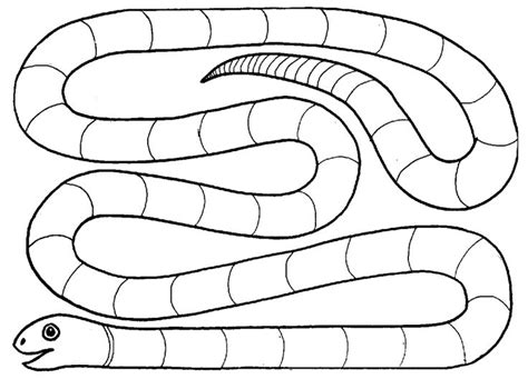 syllable snake game the teacher will say a word and for