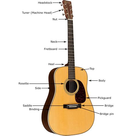 Gitar Accoustic buying guide how to choose an acoustic guitar the hub