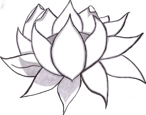 Draw On Pictures easy to draw rose easy to draw