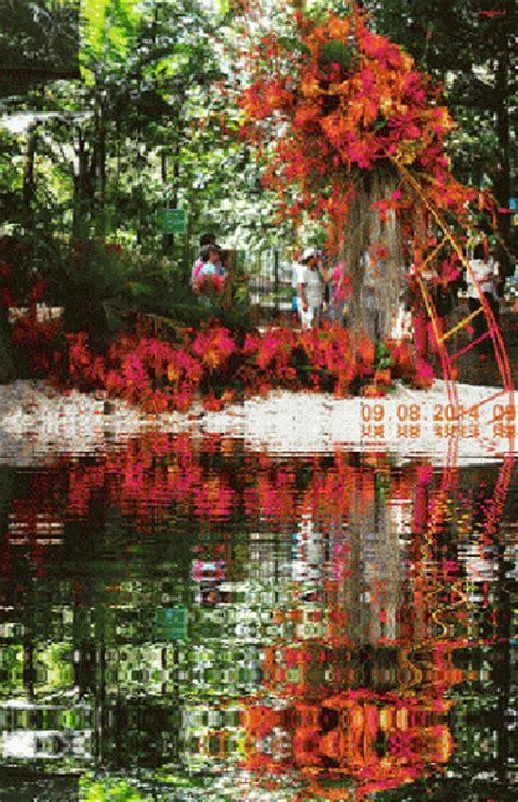 imagenes jardines japoneses movimiento imagenes animadas de hermosos jardines