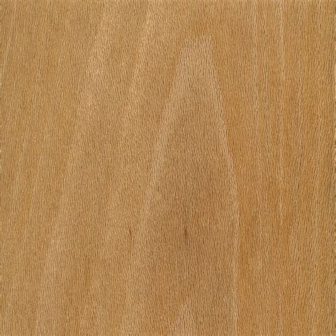 Sycamore Hardwood Floors by Sycamore The Wood Database Lumber Identification