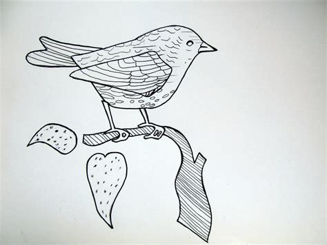 doodle how to make pigeon doodling 171 made