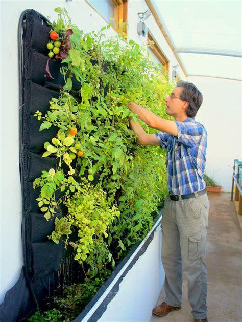 edible vertical gardens florafelt vertical garden systems