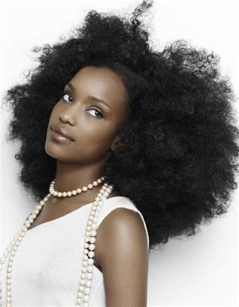 Black Hair Style Gallery by Gallery Of Black Hair Styles