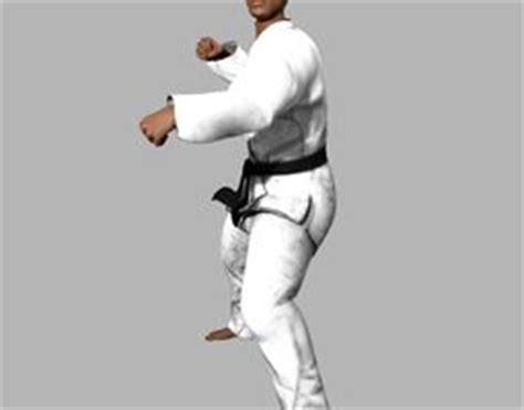 Kaos Karate Shotokan New Model 7 karate 3d models cgtrader
