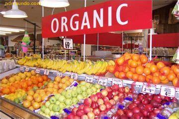 son los alimentos organicos wiki alimentos organicos fandom powered  wikia