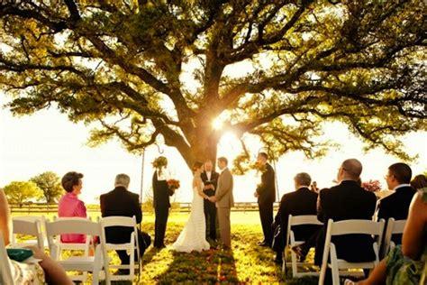 small intimate weddings in big tree small wedding
