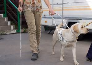 Help For Blind People Blind People Frum Satire