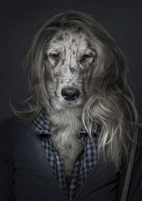 dogs that look like humans underdog how looks like if they dressed up like human design swan