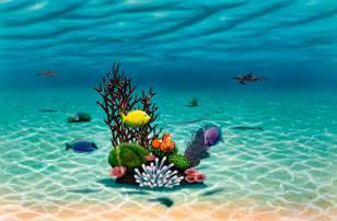 sea life wall murals underwater murals amp sea life wallpaper murals your way