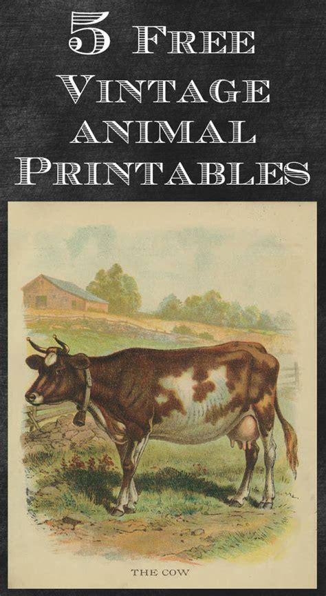 Vintage Printable Animal | vintage animal printables house of hawthornes
