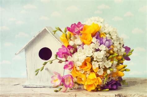fiori per una nascita quali fiori regalare per una nascita pollicegreen