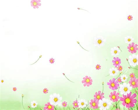 flower template powerpoint my lovely wallpapers flowers