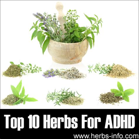 Herbal Adha herbs for adhd
