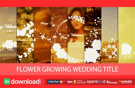 wedding title templates for after effects free flower growing wedding title free after effects project