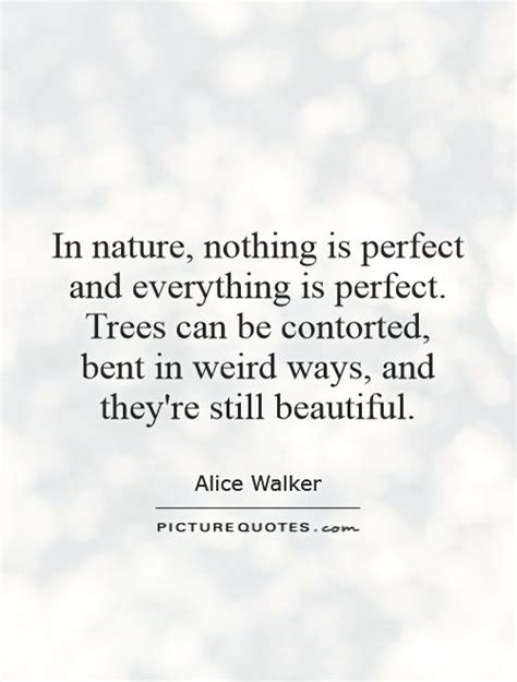 tree quotes in nature nothing is and everything is