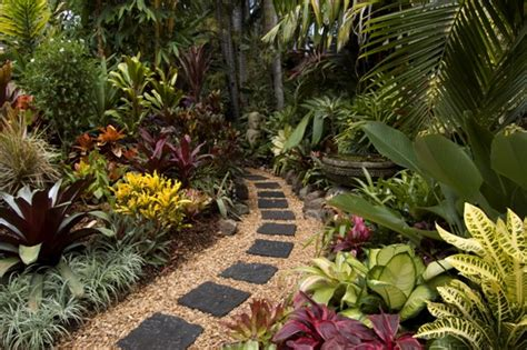 tropical plants for backyard 20 gardens tropical plants design ideas furniture