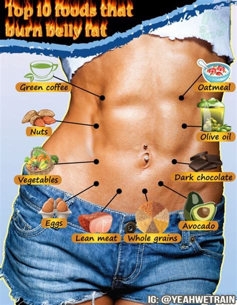 benefits of healthy fats bodybuilding top 10 foods that burn belly healthy nutrition tip