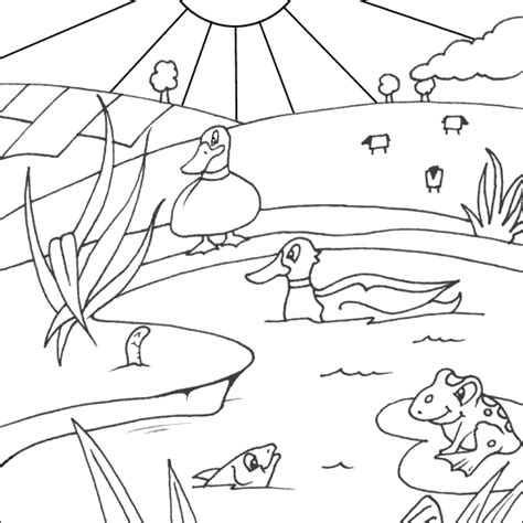 coloring pages ducks in a pond ducks colouring picture