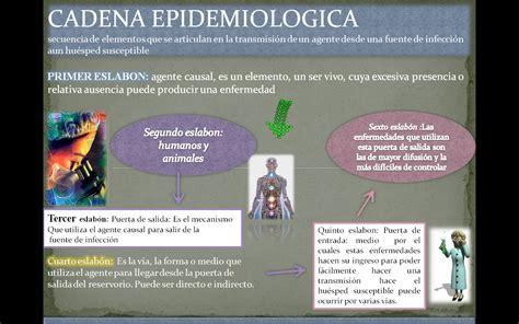 cadena epidemiologica sifilis biologiasanitaria epidemiologia inmunologia