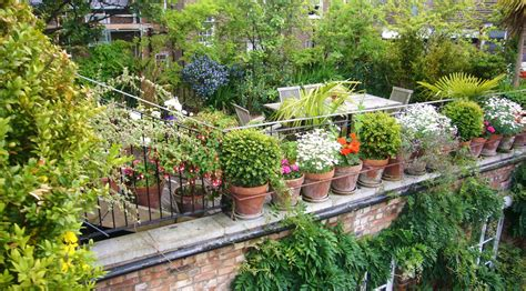 roof garden ideas roof gardens and green space in urban environments