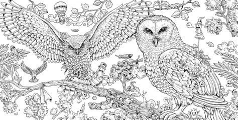 winged things a grayscale coloring book for adults featuring fairies dragons and pegasus books kerby rosanes animorphia free pattern whsmith