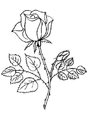 Dibujos de rosas para pintar y regalar el Día de San
