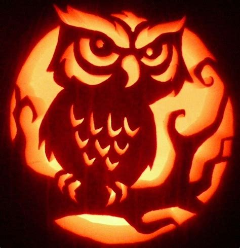 owl pumpkin carving templates owl by pumpken via flickr pumpkin carving and pumpkin