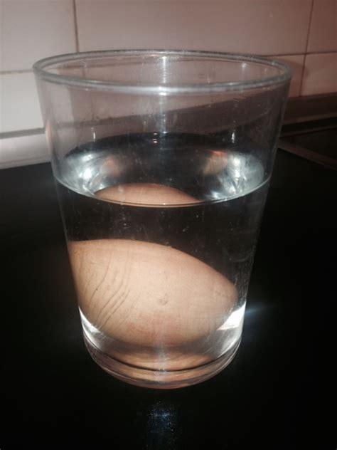 experimento agua con sal c 243 mo hacer flotar un huevo en agua experimentos para ni 241 os