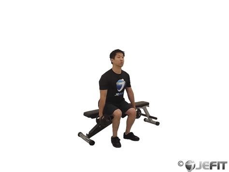 box squat bench dumbbell squat to a bench exercise database jefit