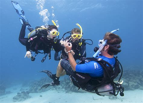 dive instructor how i quit my to become a scuba instructor