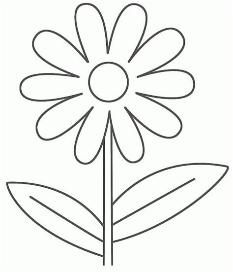 margherita fiore disegno semplice facile fiore margherita disegno disegni da