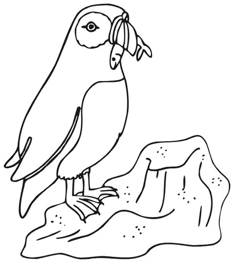 rocks on seafloor coloring pages az coloring pages